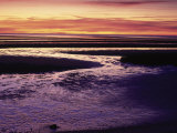 Tidal Flat at Sunset, Cape Cod, MA Photographic Print by Gary D. Ercole