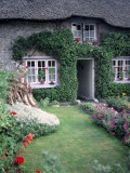 Adare Cottage Photographic Print by Timothy O'Keefe