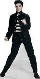 Elvis Rhythmus hinter Gittern Pappaufsteller