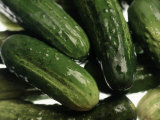 Cucumbers Photographic Print by Chris Lowe