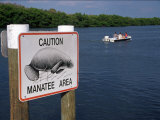 Manatee Warning Sign, Palm Island, FL Photographic Print by Jeff Greenberg