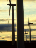 Wind Turbines, Caithness, Scotland Photographic Print by Iain Sarjeant
