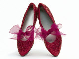Sparkling Red Shoes Photographic Print by Howard Sokol