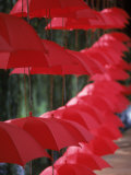 Umbrella Lights, Kunming, China Photographic Print by Hal Gage