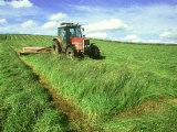 Tractor Cutting Grass Meadow for Silage Farming, UK Fotografisk tryk af Mark Hamblin