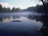 Lake Muskokas, Ontario Photographic Print by David Scott