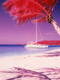 Catamaran on the Caribbean Shore Photographic Print by Jim McGuire