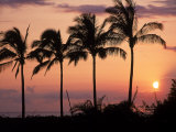 Sunset Over Kihei, Maui, Hawaii Photographic Print by Chris Rogers