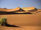 Sand Dunes in Namib Desert, Namibia Photographic Print by Walter Bibikow