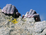 Hands Holding Onto Cliff, Djin Needle, CA Photographic Print by Greg Epperson