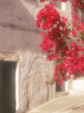 Red Flowers & Building, Epirus, Greece Photographic Print by Walter Bibikow