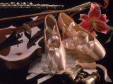 Ballet Shoes, Violin, Flute, and Flower Lámina fotográfica