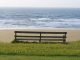 Bench Overlooking the Sea, Sutherland Photographic Print by Iain Sarjeant