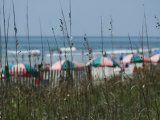 Umbrellas with Sea Grass, Myrtle Beach, SC Fotografie-Druck von Jim McGuire