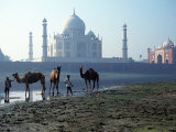 Taj Mahal, Agra, India Photographic Print by Michele Burgess