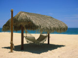 Cabo St. Lucas, Beach Palapa and Hammock Photographic Print by Jennifer Broadus