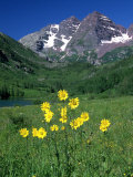 Mule's Ears, Maroon Bells, CO Photographic Print by David Carriere