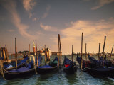 Gondolas, Venice, Italy Photographic Print by Angelo Cavalli