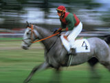 Man Riding Horse in a Steeplechase Photographic Print by Eric Horan