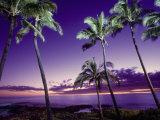 Sunset, Poipu Beach, Kauai, HI Fotoprint van Elfi Kluck