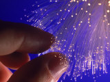 Fiber Optics Photographic Print by Matthew Borkoski