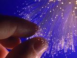 Fiber Optics Photographic Print by Matthew Borkoski