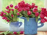 Pink Parrot Tulipa in Blue Vases with Handles, February Photographie par Lynne Brotchie