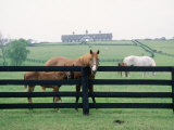 Woodford County Horse Farms, KY Photographic Print by Jim Schwabel