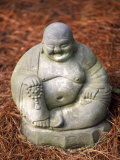 Statue of Buddha Sitting on Pine Straw Photographic Print by Jim McGuire
