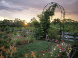 Garden, Appledore, Isles of Shoals, NH Photographic Print by Kindra Clineff