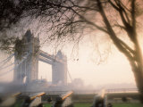 Tower Bridge, London, England, UK Lmina fotogrfica por Peter Adams