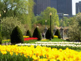 Public Gardens, Boston, MA Photographic Print by Kindra Clineff