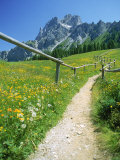 Trail to the Sexton Sundial, Sesto, Italy Photographic Print by Steven Emery
