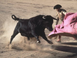 Matador with Pink Cape and Bull, Mexico Lámina fotográfica por Edward Slater