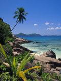 Tropical Beach, La Digue Island, Seychelles Fotografisk tryk af Angelo Cavalli