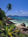 Tropical Beach, La Digue Island, Seychelles Fotoprint van Angelo Cavalli