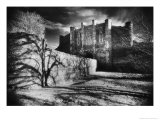 Thornton Abbey, Lincolnshire, England Giclee Print by Simon Marsden