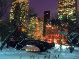 NYC, Central Park Snow and Plaza Hotel Fotografisk tryk af Rudi Von Briel