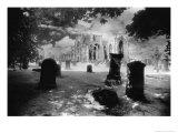 Melrose Abbey, Roxburghshire, Scotland Giclee Print by Simon Marsden