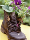 Flower Boot, Country Village Shops and Cafes, WA Papier Photo par Jim Corwin