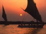 Felucca on Nile at Sunset, Cairo, Egypt Fotografie-Druck von Steve Starr