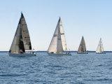 Sailboat Race, Pt Huron to Mackinac Island, MI Photographic Print by Dennis Macdonald