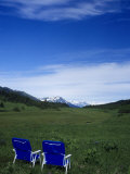 2 Chairs in Flower Field, Kenai, Alaska Photographic Print by Mike Robinson