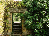 Arch Way in Ornamental Stone Wall with Fig & Vitis Fotografie-Druck von Mark Bolton