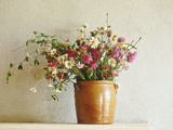 Summer Arrangement of Wild Flowers in Glazed Jar Against Whitewashed Wall Photographie par Martine Mouchy