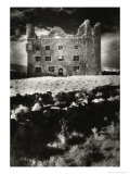 Leamaneagh Castle, County Clare, Ireland Giclee Print by Simon Marsden