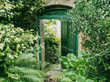 Doorway in Wall Leading to Kitchen Garden Trevarno, Cornwall Photographic Print by Mark Bolton