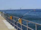 Fishing Poles Along St. Clair River, Port Huron, MI Photographic Print by Dennis Macdonald
