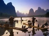 Cormorán, pescador, China Lámina fotográfica por Peter Adams