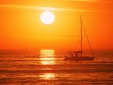Boats in Harbor, Playa Del Rey, CA Fotografisk trykk av Harvey Schwartz